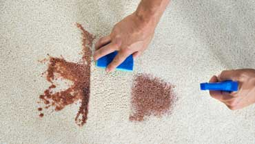 Efficient stain removal in Surrey